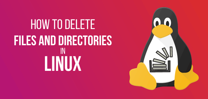 How to Delete a Directory and folder in Linux?
