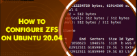 Configure ZFS on Ubuntu 20.04 - Step by Step Process ?
