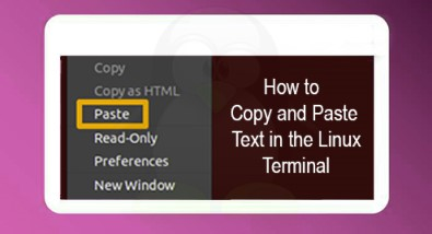 Copy and Paste Text in the Ubuntu 20.04 LTS Linux Terminal - Step by Step ?