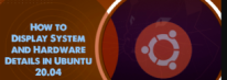 Display System and Hardware Details in Ubuntu 20.04 - Step by Step Process ?