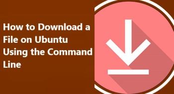 Download a File on Ubuntu Using the Command Line on Ubuntu 20.04 system