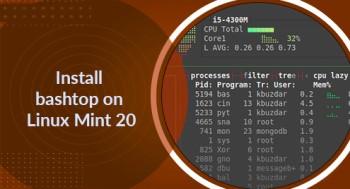 Install bashtop on Linux Mint 20 - Best Method ?