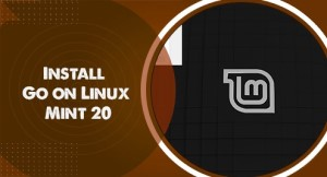 Install Go on Linux Mint 20 - Step by Step Process ?
