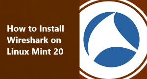 Install Wireshark on Linux Mint 20 - Best Method ?