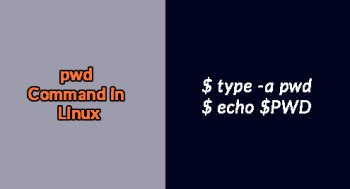 Linux pwd Command - An overview with examples