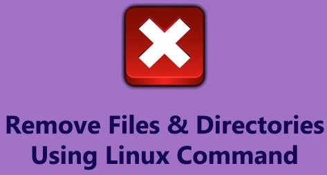 Remove Files and Directories Using Linux Command Line - The Right way ?